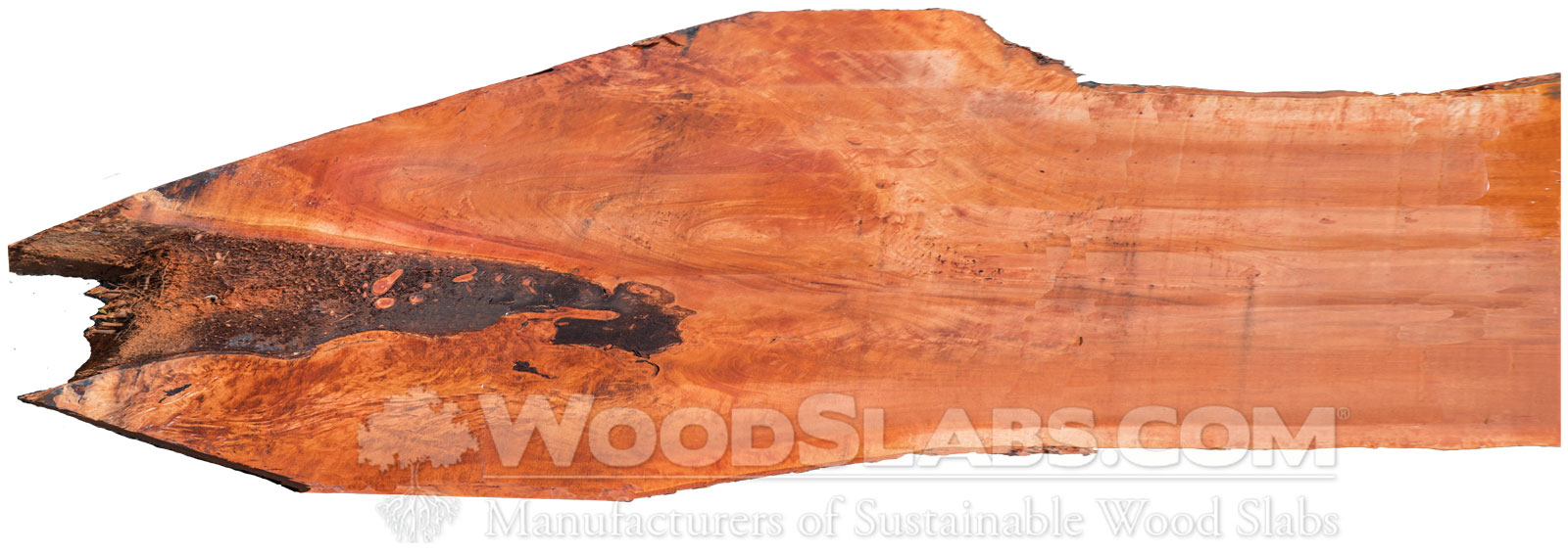 Bishopwood Slabs