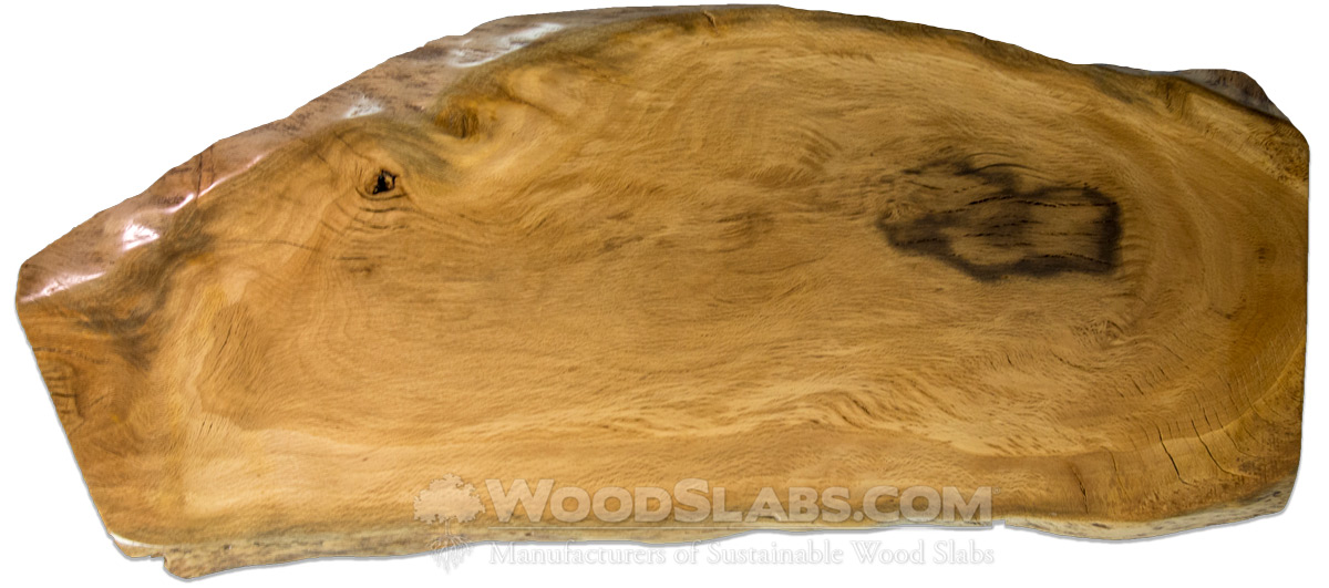 Live Oak Wood Slabs