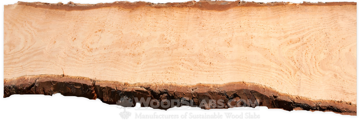 Longleaf Pine Wood Slabs