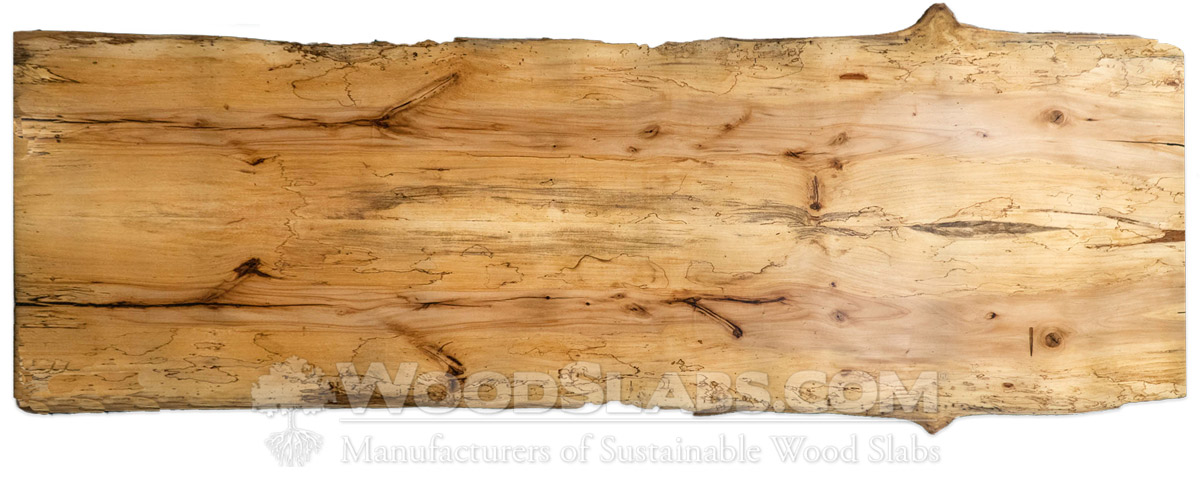 Spalted Pecan Wood Slabs