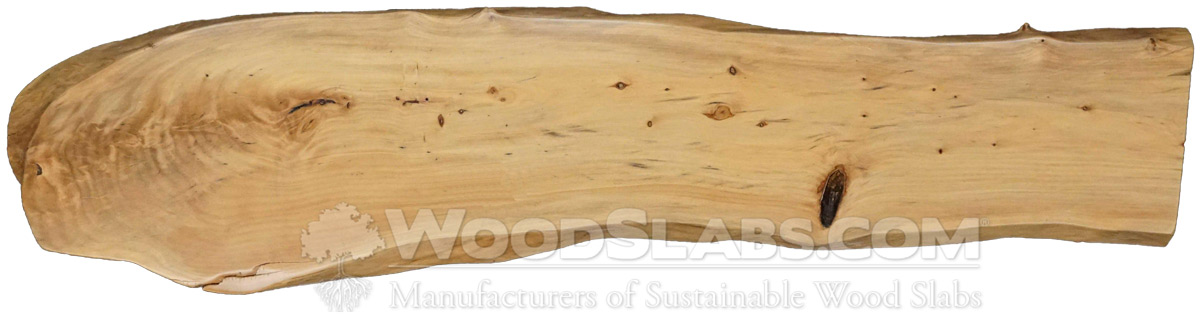 Podocarpus Wood Slabs