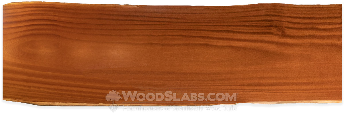 Tatajuba Wood Slabs