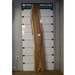 Walnut Wood Slab #NY5138