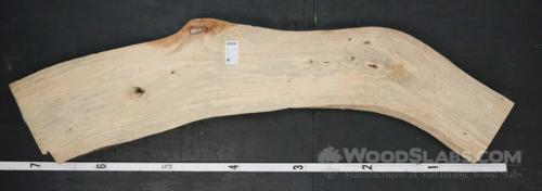 Banyan Tree Wood Slab #EU6-IJJ-W1E4
