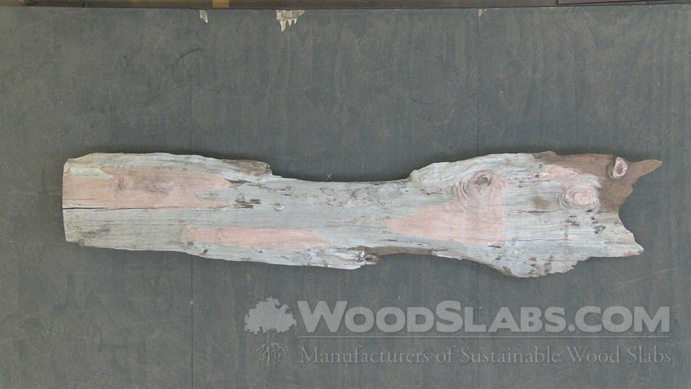 Australian Beefwood Wood Slab #A53-47C-0UQ3