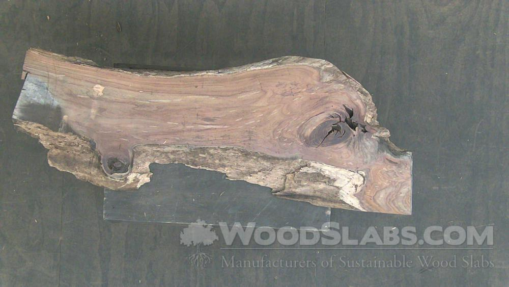 Indian Rosewood Wood Slab #MHA-D0T-VTW3