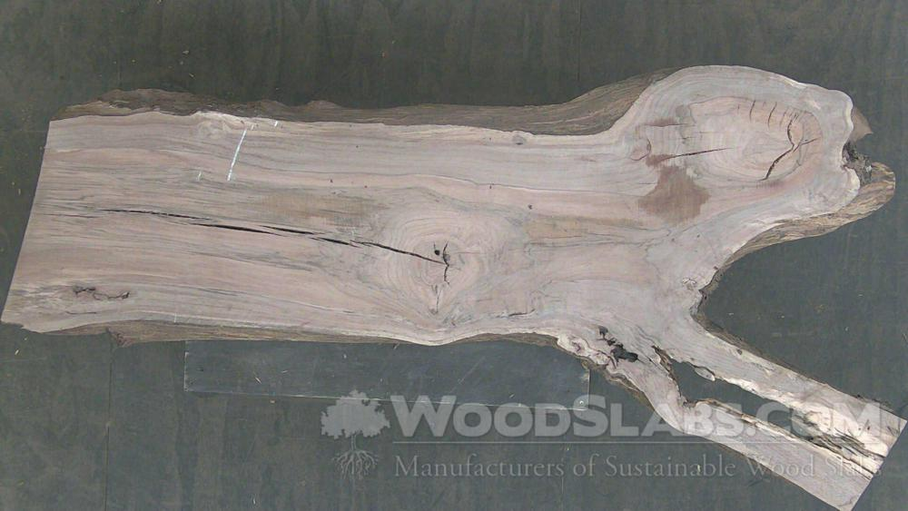 Laurel Oak Wood Slab #LDH-00G-3GRE
