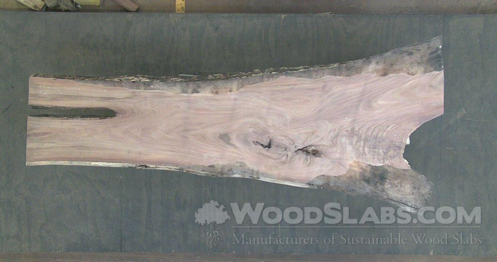 Indian Rosewood Wood Slab #JR0-1D6-GR3J