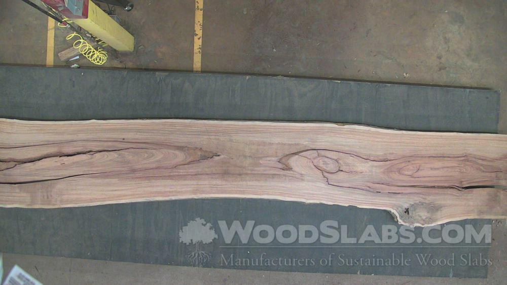 Cumaru Wood Slab #6K5-XL3-J3GE