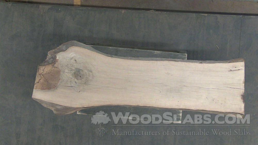 Live Oak Wood Slab #88Q-GJ0-EI5M