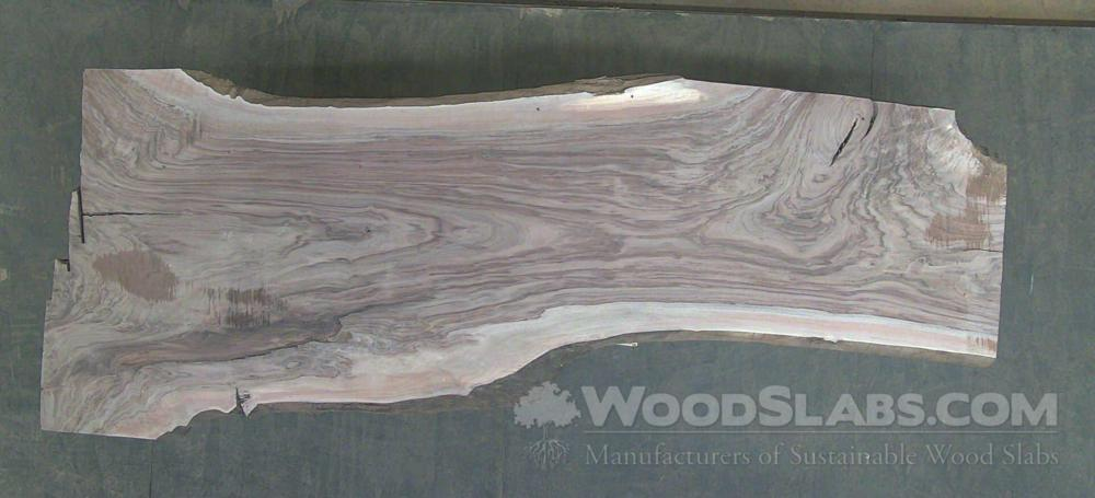 Walnut Wood Slab #EJJ-B04-NIC1