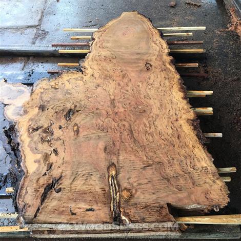Finishing a live edge wood slab isn t so for Finishing live edge wood