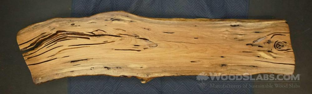 Laurel Oak Wood Slab #98A-TZE-OWWA