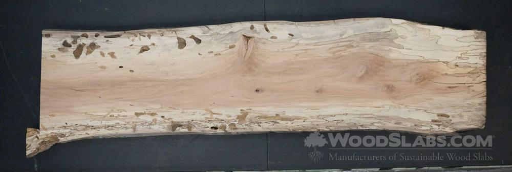 Sycamore Wood Slab #1RT-DR3-PMLQ