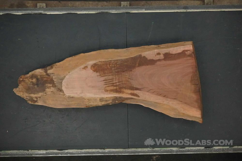 Eucalyptus Wood Slab #JIV-I38-TM6S