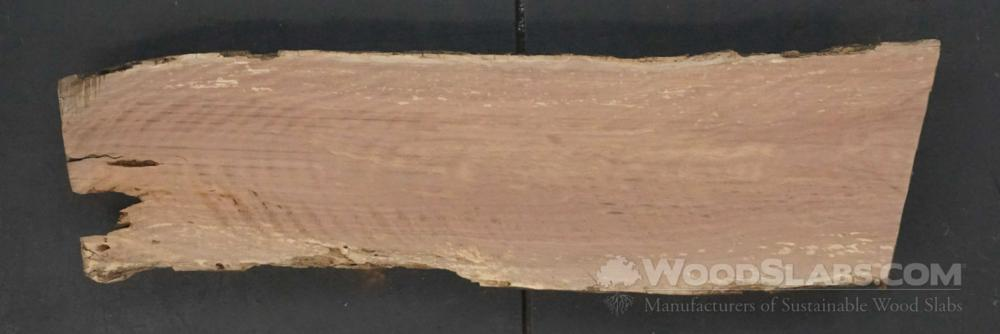 Laurel Oak Wood Slab #BJT-NI3-WUI9