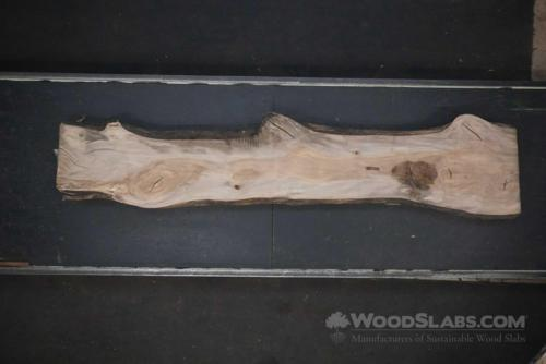Sycamore Wood Slab #2OX-5FT-5D8J