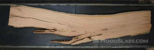 Eucalyptus Wood Slab #4TF-QZ8-RZ0F