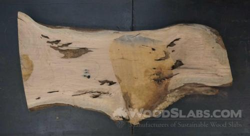 Live Oak Wood Slab #TA8-96Z-GMHI