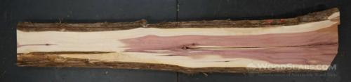Aromatic Cedar Wood Slab #76K-QZB-46VV