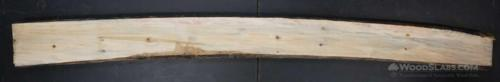 Norfolk Island Pine Wood Slab #6CY-C9W-67MC
