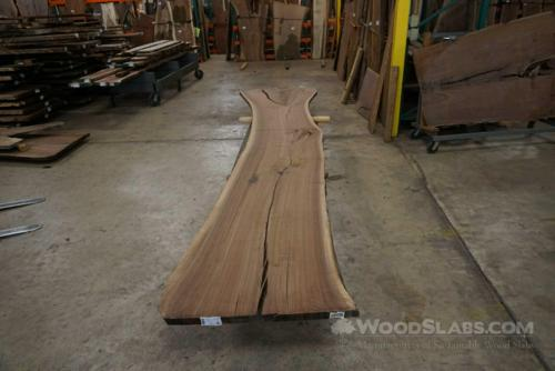 Walnut Wood Slab #LMP-U8Q-BXLO