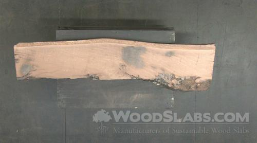 Live Oak Wood Slab #CTX-2DY-GXGN