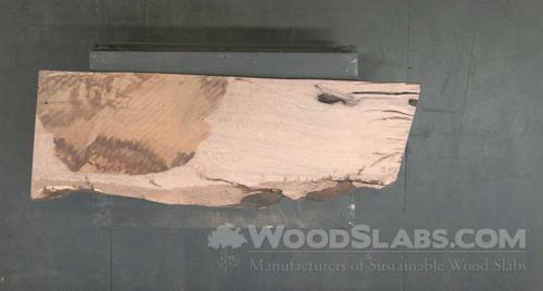 Live Oak Wood Slab #BYZ-HAX-EE38