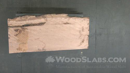 Live Oak Wood Slab #VYQ-XMY-4LQO
