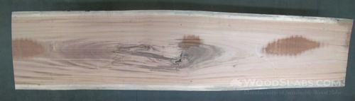 Tigerwood Wood Slab #MZA-O0L-8CQ7
