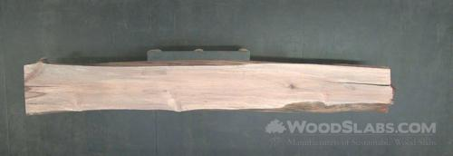Australian Beefwood Wood Slab #8KC-PJH-VH0Y