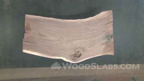 Walnut Wood Slab #CP7-XY2-DFF1