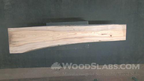 Cypress Wood Slab #RFP-OLP-LTA0