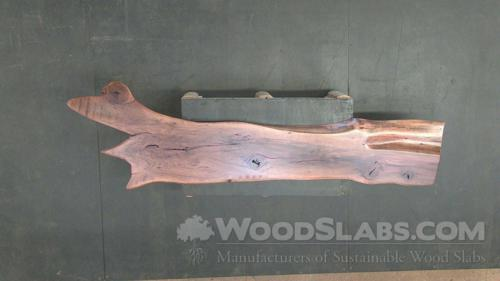 Australian Beefwood Wood Slab #OM1-GWQ-X4UK