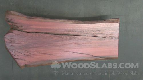 Eucalyptus Wood Slab #RLD-LJI-IP0G