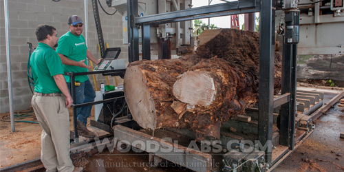 wood slabs mill