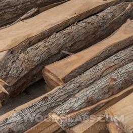 Chinaberry wood slab