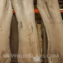 laurel oak wood slab
