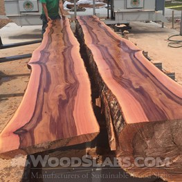 Australian Beefwood wood slab