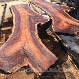 monkey pod wood slabs